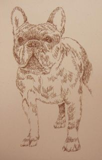 French Bulldog Dog Art Stephen Kline Lithograph 130 Drawn Using Only