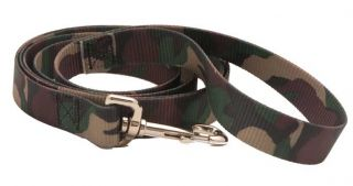 Patterned Martingale Dog Collar and Leash Set