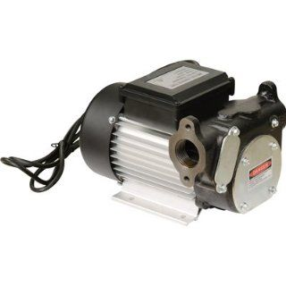 Cast Iron Diesel Fuel Transfer Pump   22 GPM, 120 Volt AC